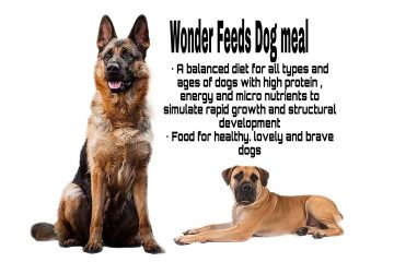 Wonder Feeds Dog Meal