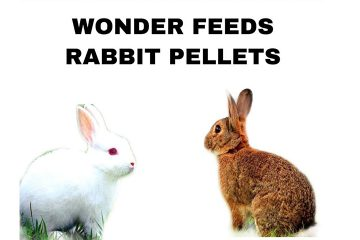 Wonder Feeds Rabbit Pellet